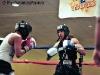boxing-1608